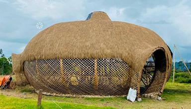 巴西:思想之家 特色竹屋 竹编 竹建筑