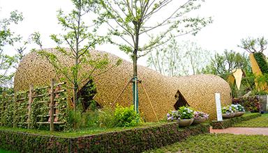 上海崇明区:花博会大师园荷兰酷 竹建筑
