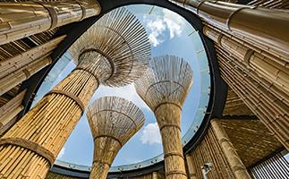 竹子建筑的好处有那些?