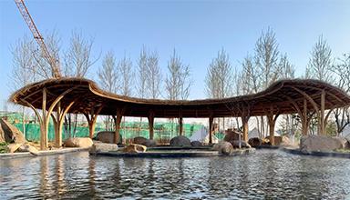 山东威海市:天福高尔夫 竹景观 竹建筑