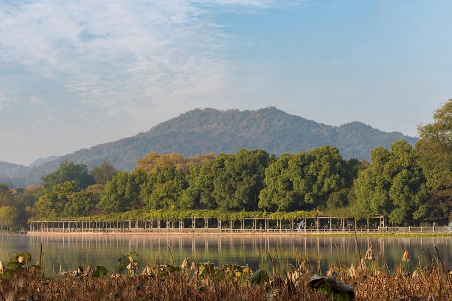 竹建筑与建筑美学完美结合