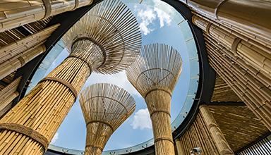 广西桂林市:万达文旅城 竹装饰