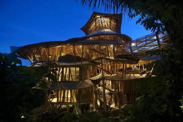 她,一己之力建造异形竹别墅 迎来竹建筑界的轰动