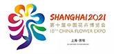 上海崇明区:花博会大师园荷兰酷 竹景观