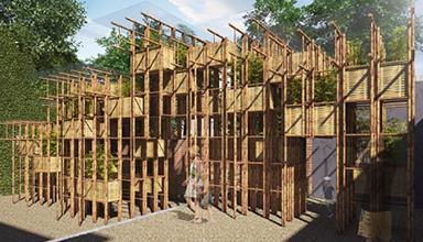 澳大利亚:竹制凉亭 竹景观