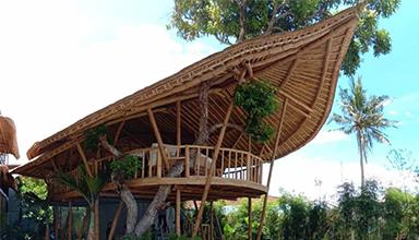 竹子建筑的优势在哪里?
