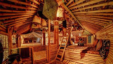 日本:相扑竹屋 竹建筑