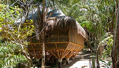 巴西:宿舍和培训中心 竹建筑