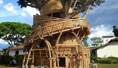 竹建筑界的天然氧吧-仿生现代绿色竹屋