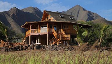 加拿大:竹别墅 竹建筑