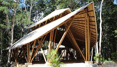 墨西哥 图卢姆:竹棚 竹景观