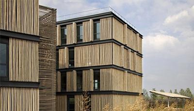 建房子用竹子建造好吗?竹子建筑寿命有多久?