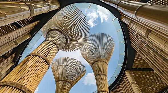 盘点国内叹为观止(特色)现代竹建筑 ,竟然如此巧夺天工!(下篇)