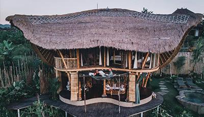 为什么竹材可以用作建筑材料呢?