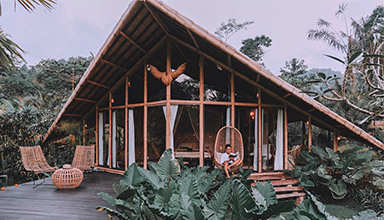 美国 洛杉矶:藏鹰竹屋 竹建筑